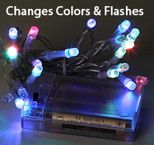 Small Battery LED Color Changing Lights