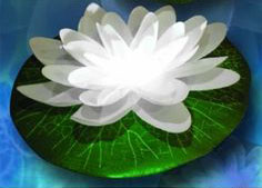 White Led Floating Lily Lights Up In Water Buy Now