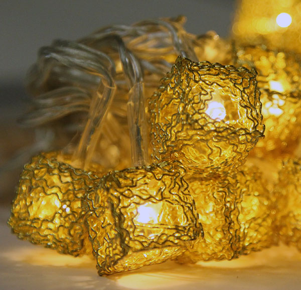 Battery Operated 20 Gold Wire String Lights Warm White