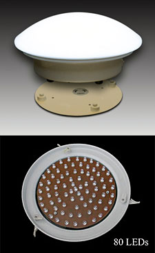 Perfect Table Skirt Light With 80 White LEDu0027S   Battery Operated